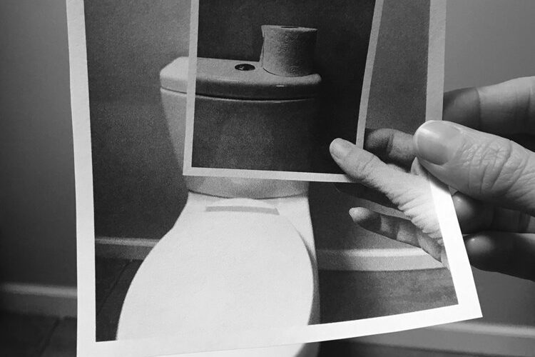 Photos remade in toilet paper